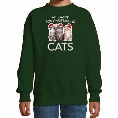 Groene kersttrui / kerstkleding all i want for christmas is cats kinderen
