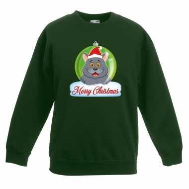 Kersttrui grijze kat / poes kerstbal groen jongens meisjes
