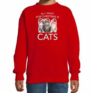 Rode kersttrui / kerstkleding all i want for christmas is cats kinderen