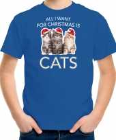 Blauw kerstrui kerstkleding all i want for christmas is cats kinderen