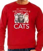 Rode kersttrui kerstkleding all i want for christmas is cats heren