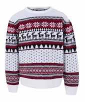 Witte kersttrui kinderen nordic print